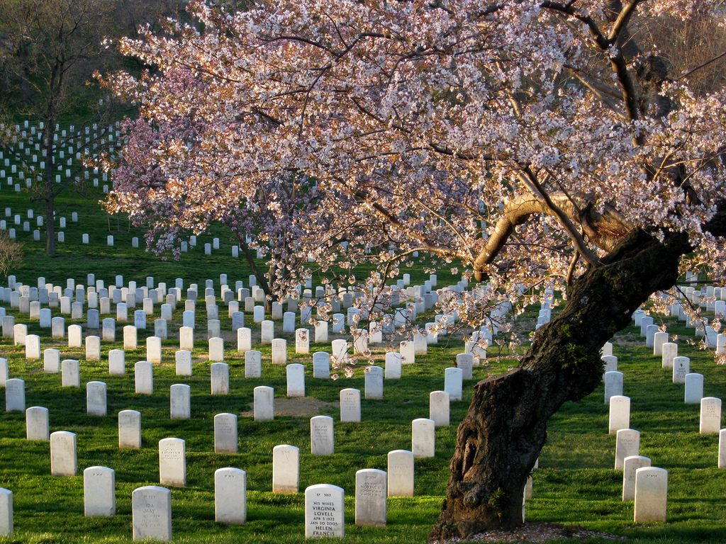 Arlington National Cemetary credit Frank Gruber